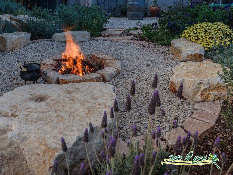 8 כללי אצבע לעיצוב הגינה הפרטית.